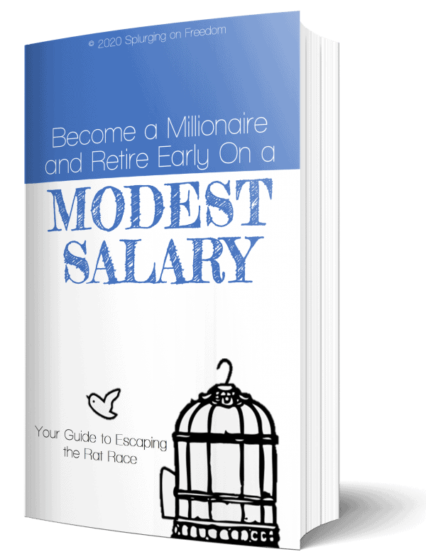 Become a Millionaire and Retire Early on a Modest Salary Book Cover